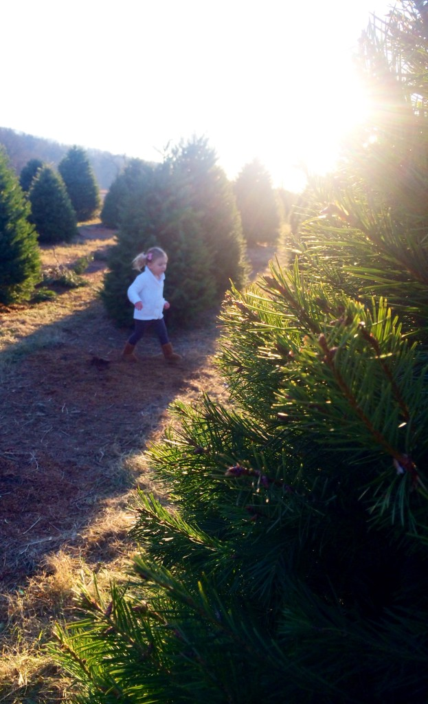 emma christmas tree running