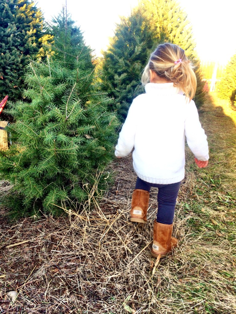 emma uggs christmas tree farm