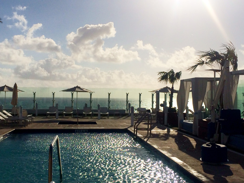 miami morning rooftop pool and ocean view